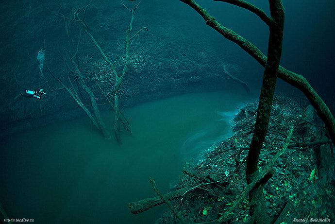 sungai di dalam laut di Canote Angelita