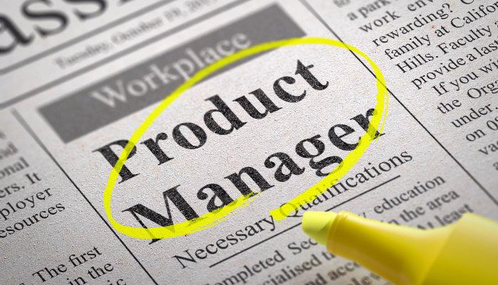 manajer proyek