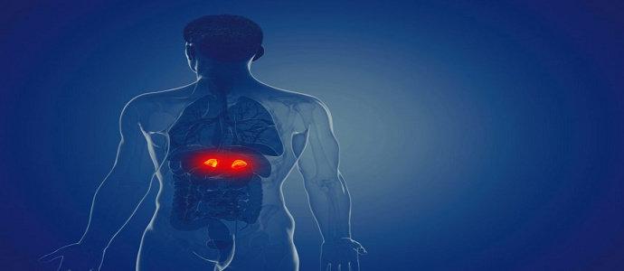 Sindrom Cushing atau Cushing's Syndrome