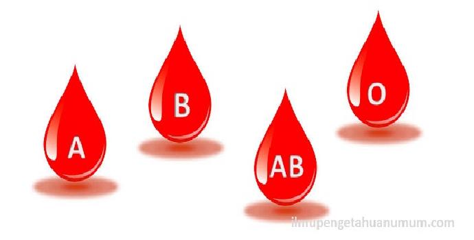 darahkomposisi