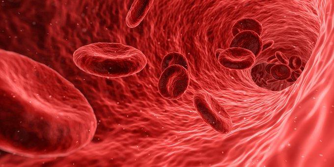 Viskositas darah