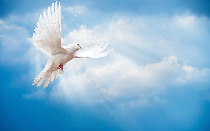 Roh Kudus