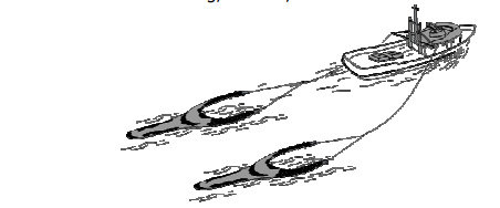 Pukat udang