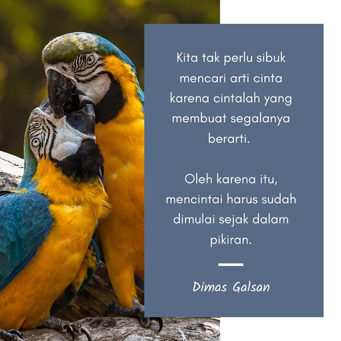 Quotes Cinta Galsan