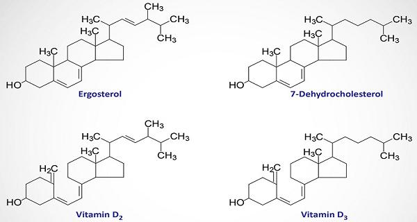 Struktur kimia vitamin D