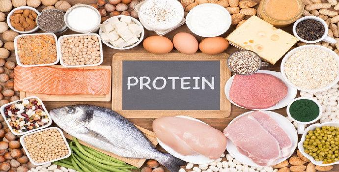 Apa yang dimaksud dengan nilai gizi protein ?