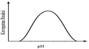 Hubungan kecepatan reaksi dengan pH