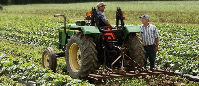 Penyuluhan pertanian