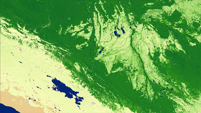 Green Area Index