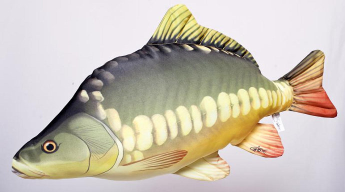 Ikan Mas Kaca