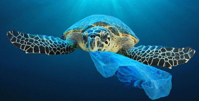 Bagaimana Cara Penanggulangan Pencemaran Laut Diskusi Sains Dictio Community