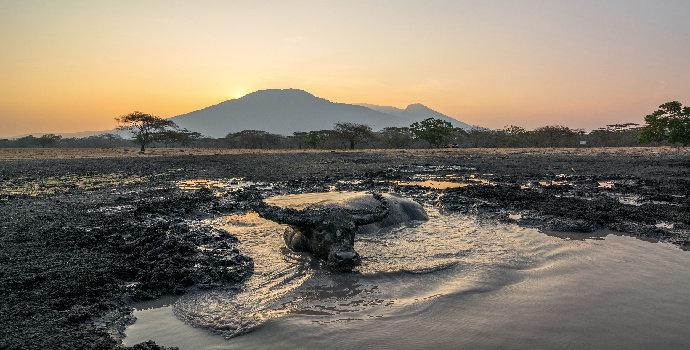 Konservasi dan Pengembangan Taman Nasional Baluran