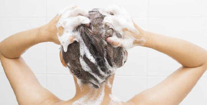 cara memilih shampoo organik