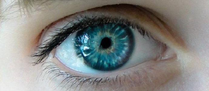 otot mata