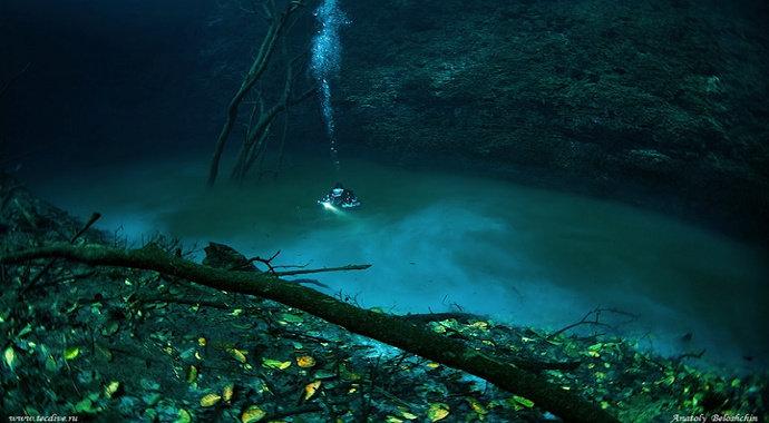 Sungai dibawah laut