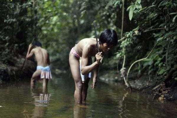 Orang Rimbo dan Suku Anak Dalam