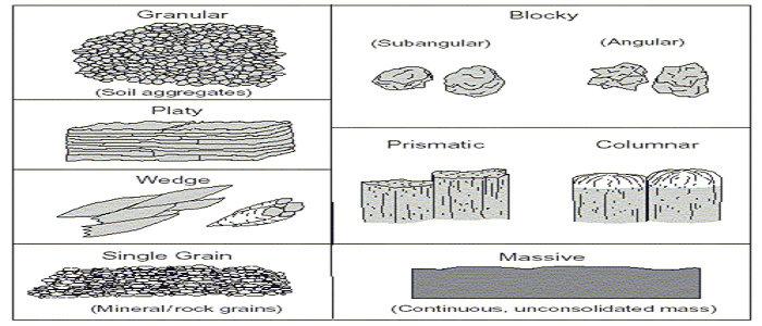Klasifikasi tekstrur tanah