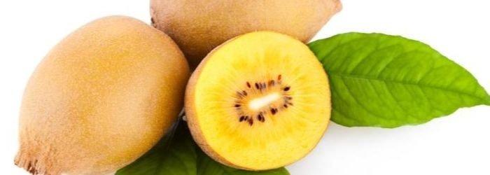 kiwiwi