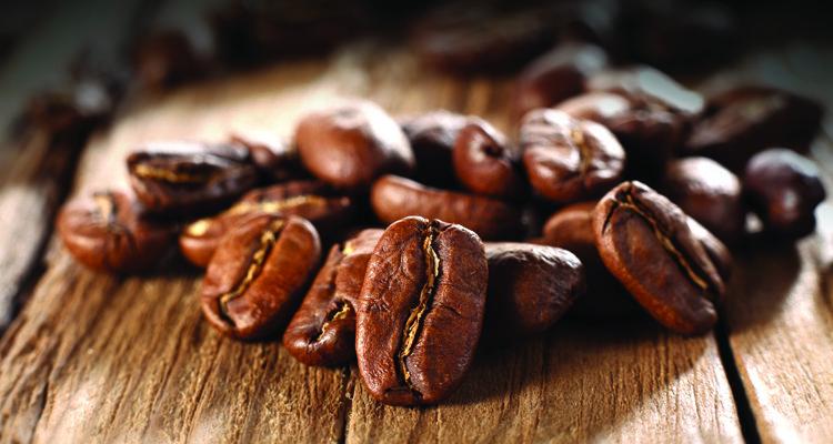 perbedaan_kopi_arabica_dengan_robusta1
