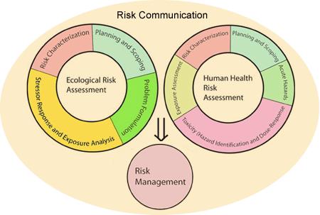 risk_web_graphic3