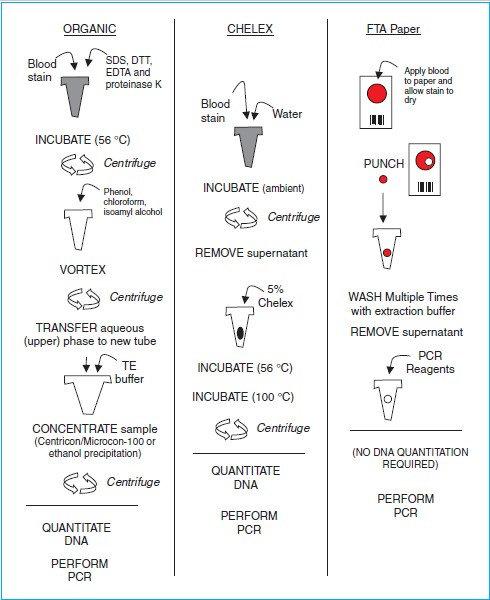 Metode dan Proses Ekstraksi DNA