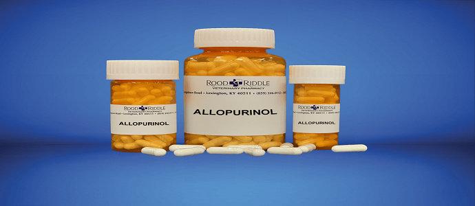 florinef non medicinal ingredients