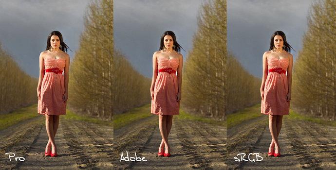 Adobe RGB atau sRGB