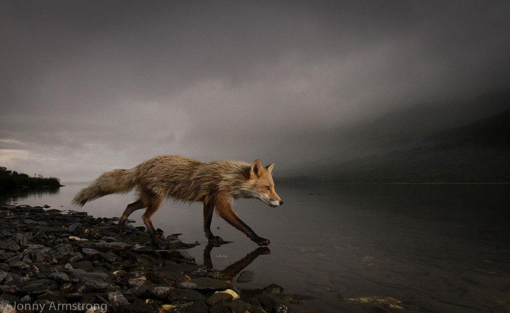 foto karya Jonny Armstrong
