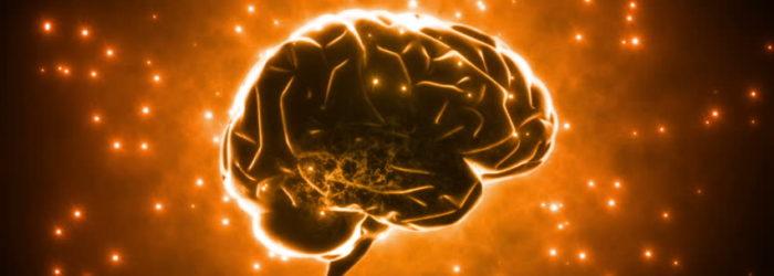 otak-700x250