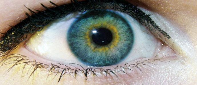 tekanan intra okular