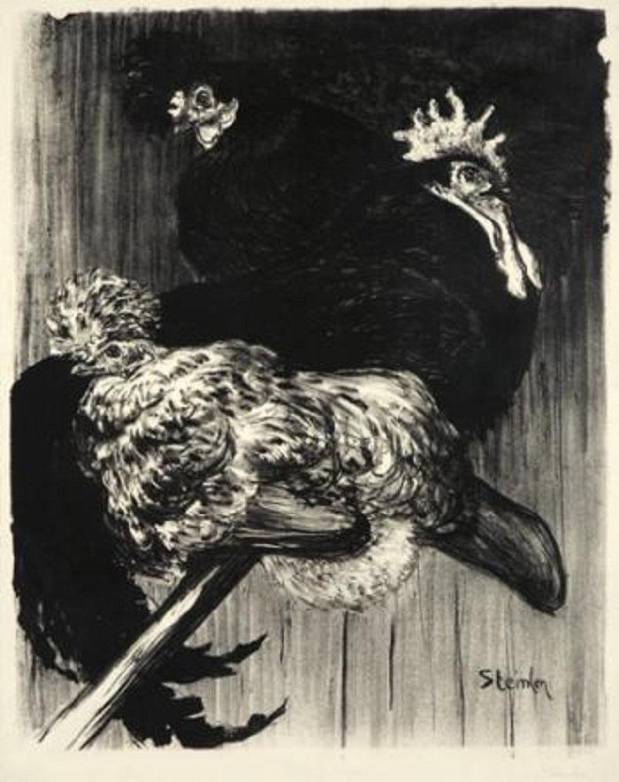 Coq et Poules, 1896