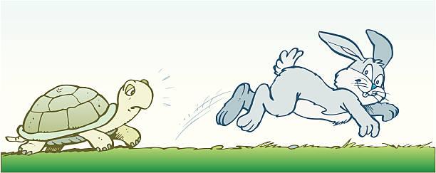 turtle-rabbit-clip-art-rabbit-and-turtle-clipart-612_243
