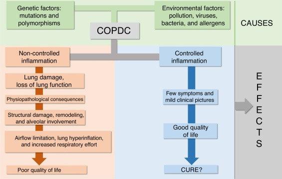 Interaksi antara penyebab, efek dan keluaran dari PPOK