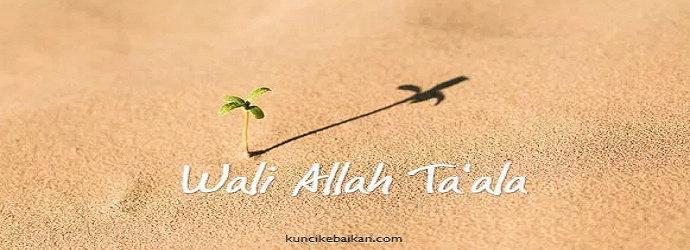 wali Allah