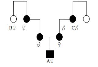 Ahli waris golongan IV harta warisan dibagi dua sama besar